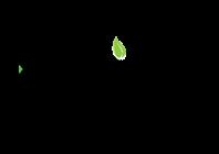 Koita